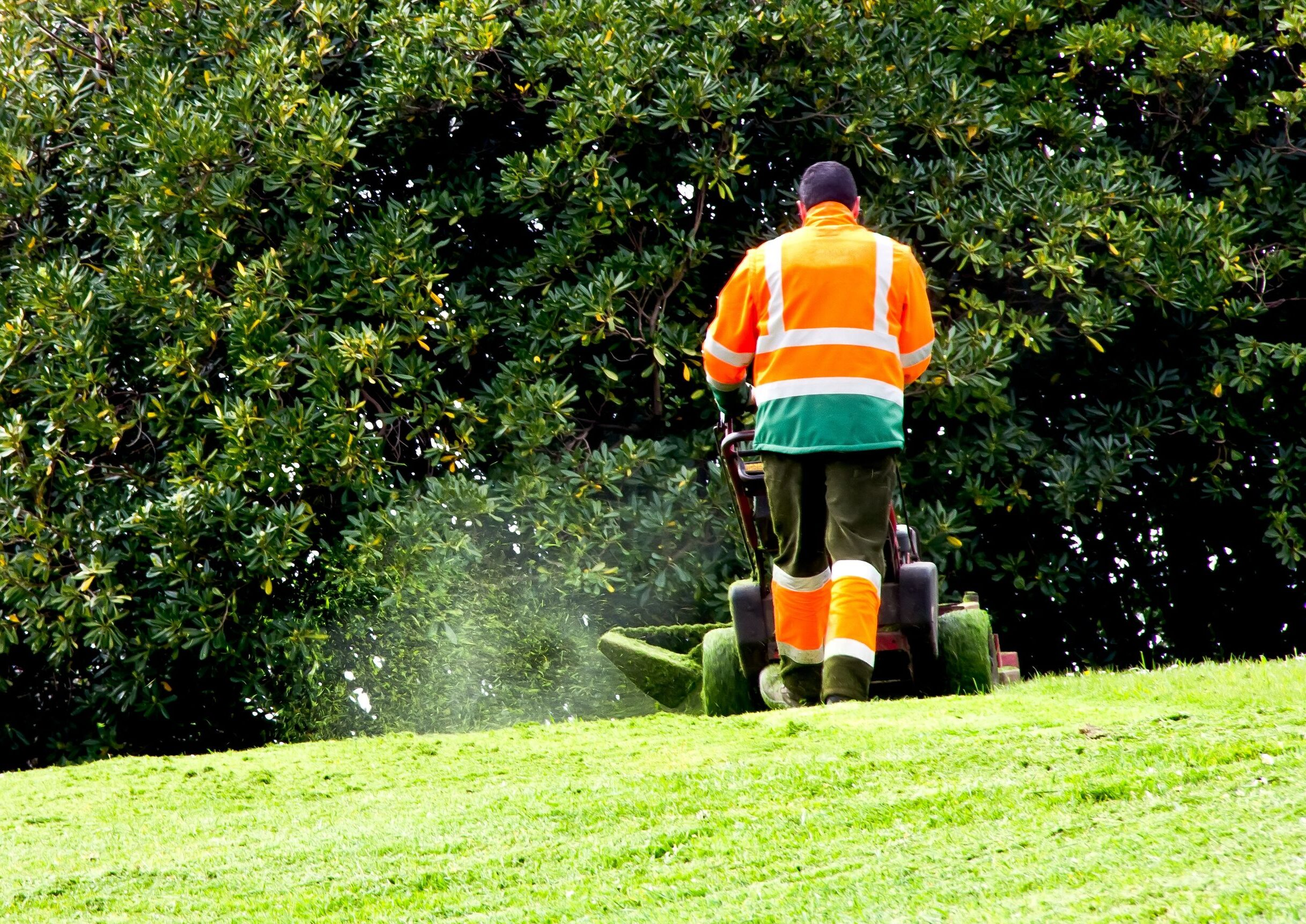 When the Heat Is On – What Does That Mean For Your Lawn?